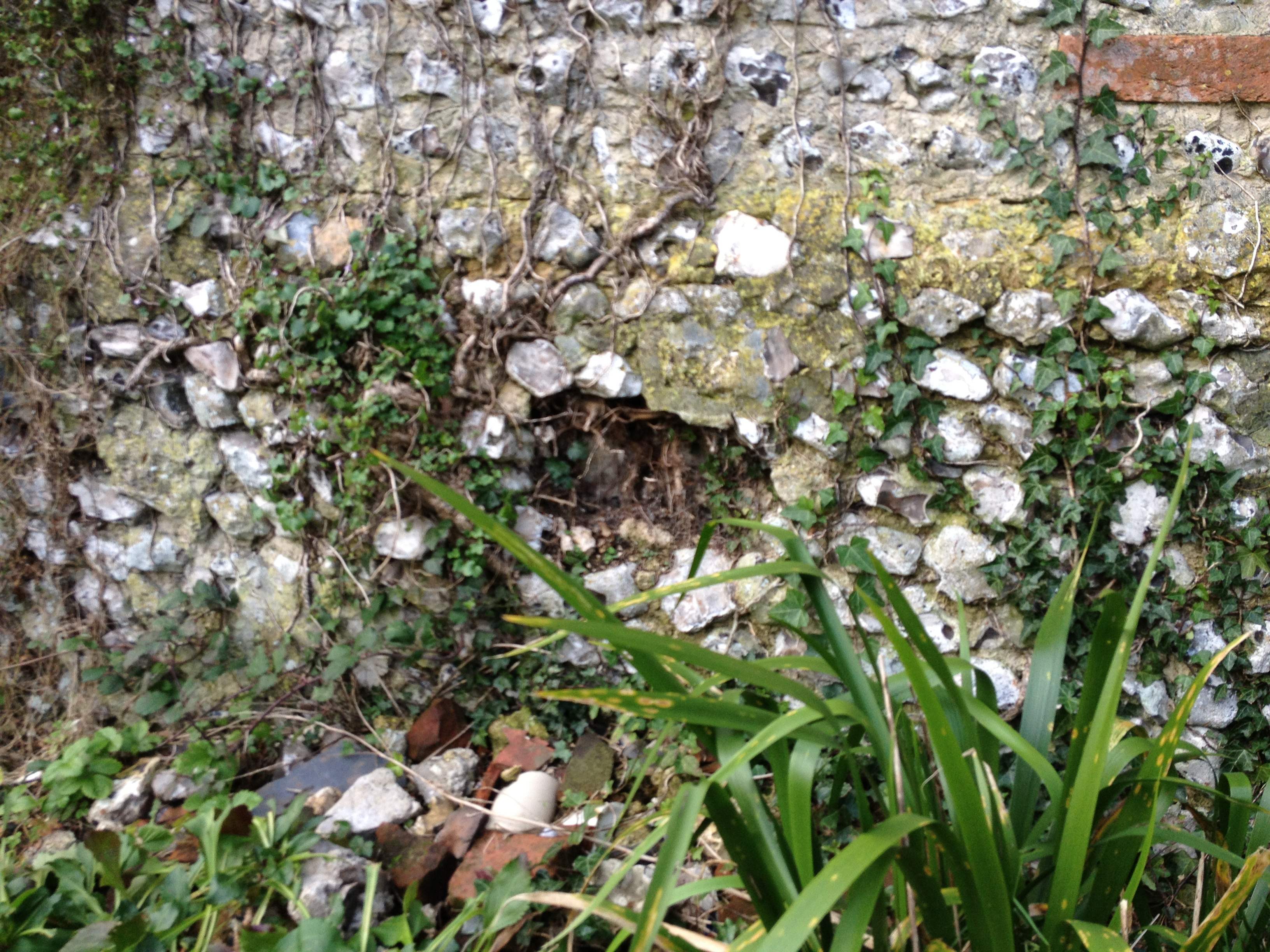Sussex Flint Wall